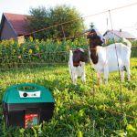 O zdrojích impulzů pro elektrické ohradníky