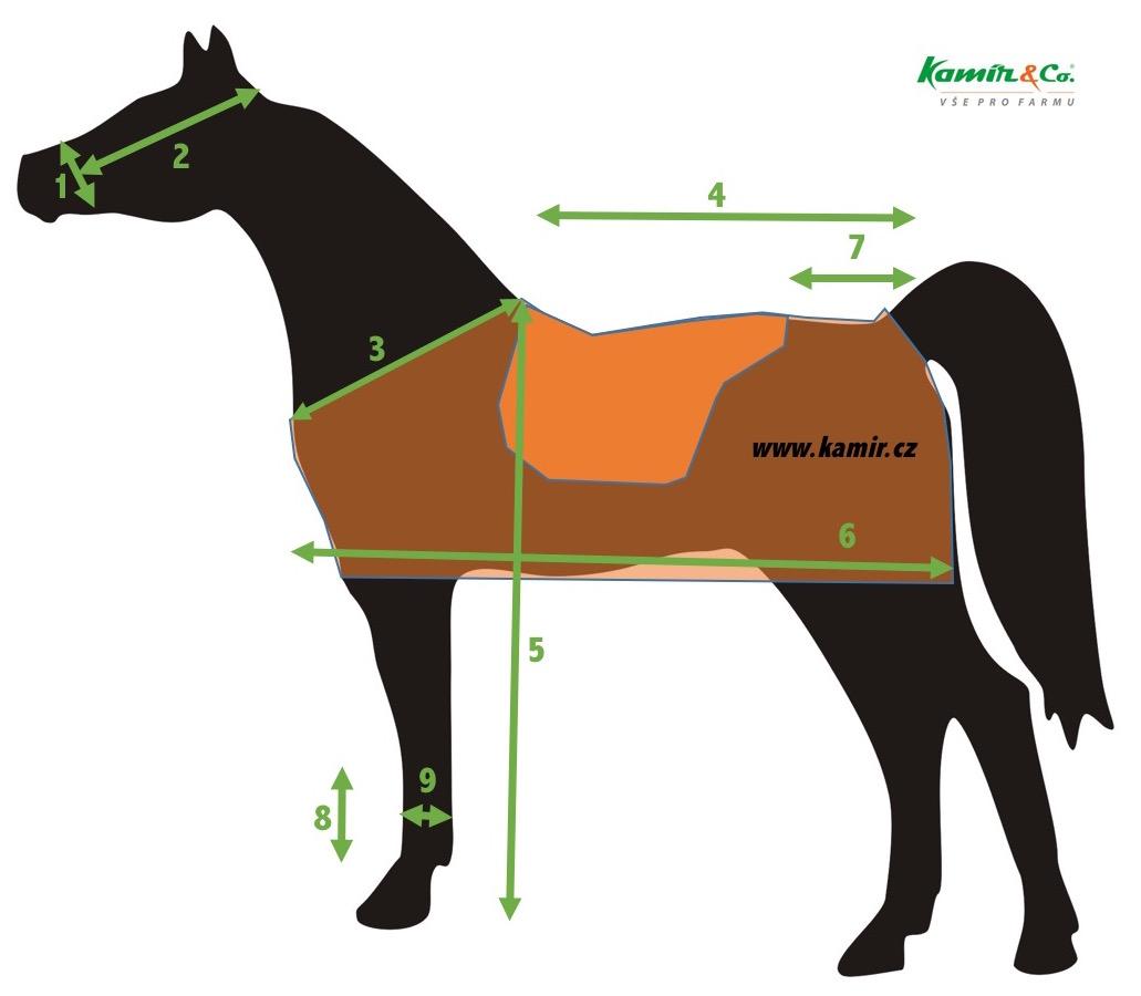 Jak správně měřit koně - schéma