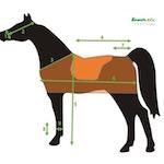 Jak měřit koně?