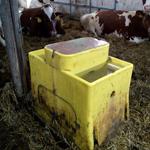 Kvalitní napájecí žlaby GEA nezamrznou ani při -15°C