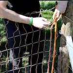 Video: Jak postavit elektrickou ohradu pro ovce