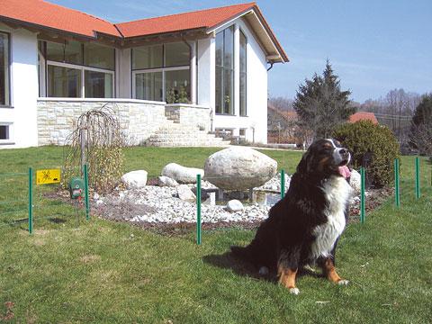 Elektrické ohradníky pro psy mohou ohrazovat prostor, kam psi nesmějí