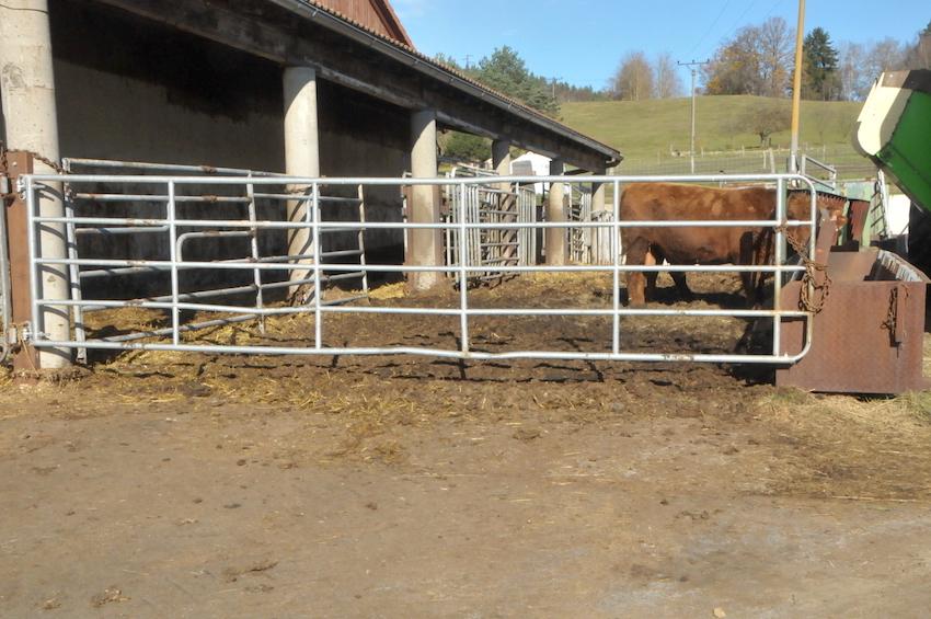 brána na pastviny je 5 let používaná jako zábrana pro výkrm býků