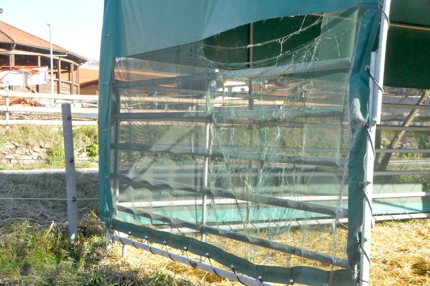 45663 přístřešek pro zvířata, pokud je postaven uvnitř pastviny, zvířata jej mohou poškozovat - po 6 letech používání