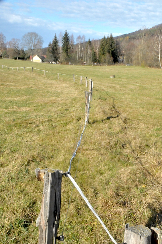 33113 vysokopevnostní drát na akátových kůlech, pro zvýraznění ohrady je doplněn páskou.