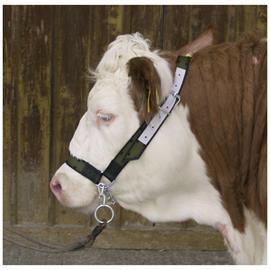 Ohlávka pro krávy s řetízkem nylonová,olivově zelená