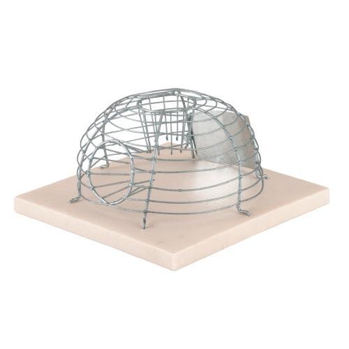 Past na živé myši drátěná na plastové podložce