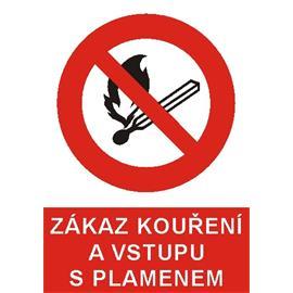Zákaz kouření a vstupu s plamenem - plast A5