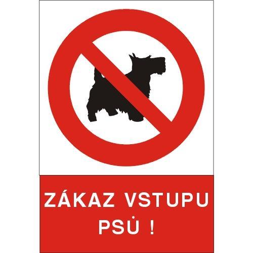 Zákaz vstupu psů ! - plast A4