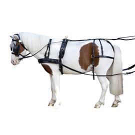 Postroj na koně Berta, shetty, černý