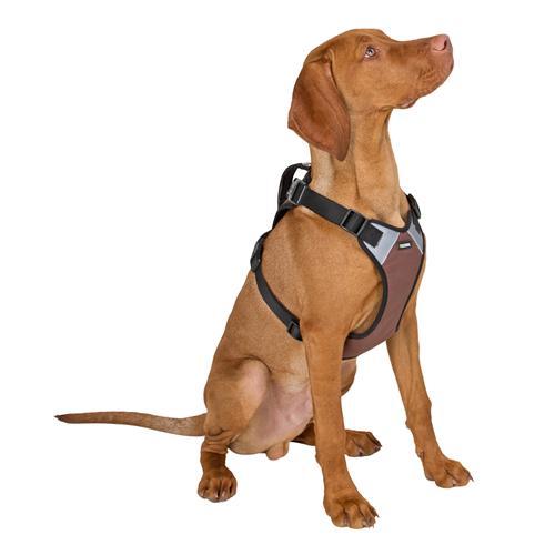 Postroj na psa Pulsive - 36-50 cm