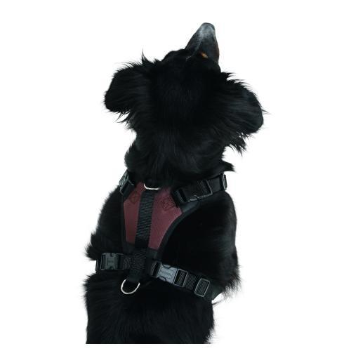 Postroj na psa Pulsive - 62-85 cm