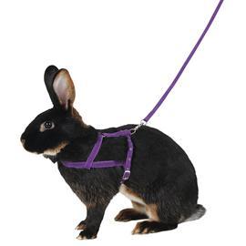 Postroj pro králíky pro agility - vel. L