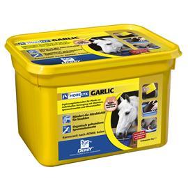 Liz pro koně Horslyx Garlic, 5 kg