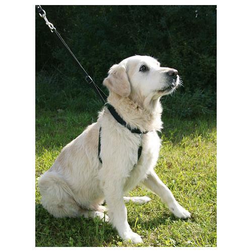 Postroj pro psa výcvikový, černý - 25-30 cm Postroj pro psa, černý, výcvik