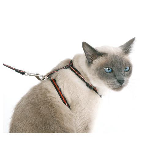 Reflexní postroj pro kočku, set, černo-červený Reflexní postroj pro kočku, set, černo-červený