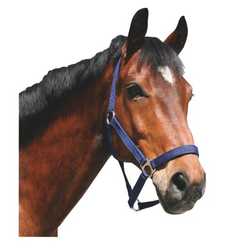 Nylonová ohlávka Covalliero Classic - modrá vel. 1 - pony
