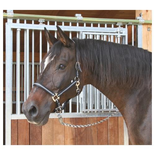 Ohlávka pro koně Mustang, podložená, 2x stavitelná - černá, vel. Cob