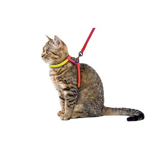Postroj pro kočku s vodítkem Postroj pro kočku s vodítkem