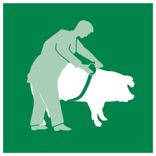 Pásková míra RONDO pro skot a prasata Pásková míra RONDO pro skot a prasata