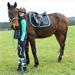 Jezdecká bezpečnostní přilba Covalliero Carbonic, černá - JUNIOR (50-54 cm)
