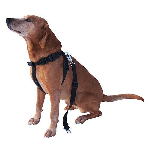 Bezpečnostní pás pro psa do auta - 20 - 50 cm, červený Bezpečnostní pás pro psa do auta