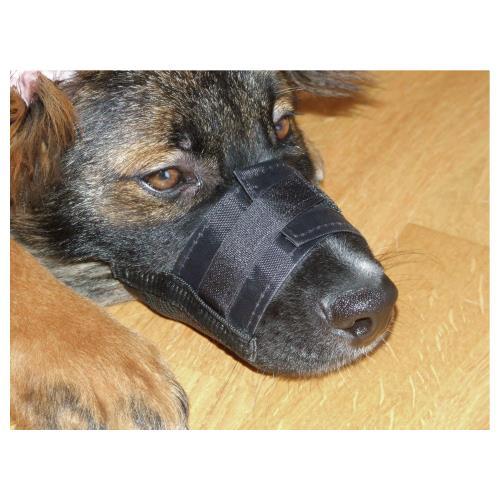 Fixační nylonový náhubek pro psa, černý - 18-24 cm Náhubek pro psa, nylon
