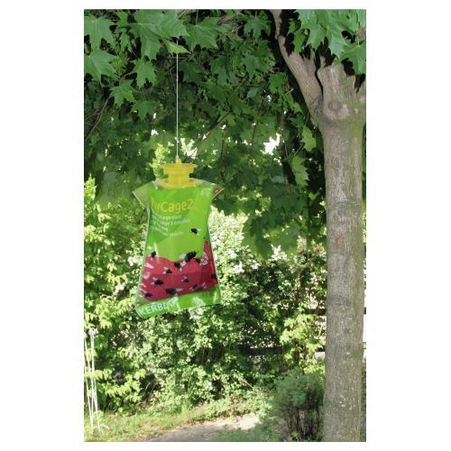 Lapač much FLYCAGE s lákavou látkou na 4 - 6 týdnů, zelený kryt Lapač much FLYCAGE s lákavou látkou na 4 - 6 týdnů, zelený kryt