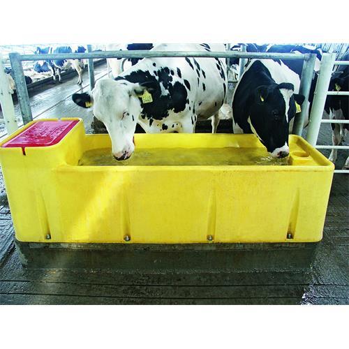 Napájecí žlab GEA THERMO Watermatic - Watermatic 150 - 16 l Fotka- napáječka GEA v provozu