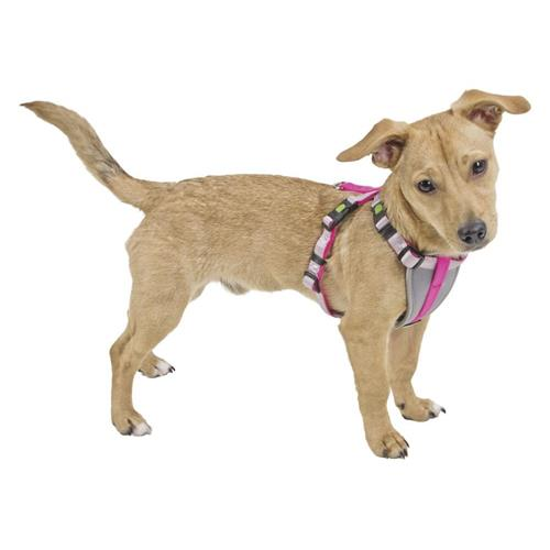 Postroj pro malé psy, růžový - S Nylonový postroj pro malé psy a štěňata, růžový, S