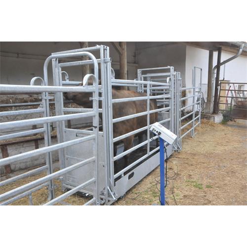 Ližinová váha 2 x 600 mm, do 1500 kg s indikátorem FORMATIC7D Ližinová váha 2 x 600 mm, do 1500 kg s indikátorem FORMATIC7D