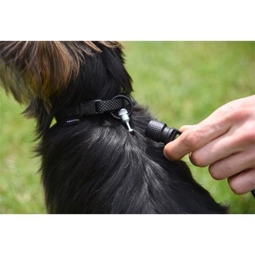 Set obojek a vodítko pro psy GoLeyGo, černé - vel. S, max. 15 kg Set GoLeyGo černé, 10 mm, max. 15 kg, vel. S