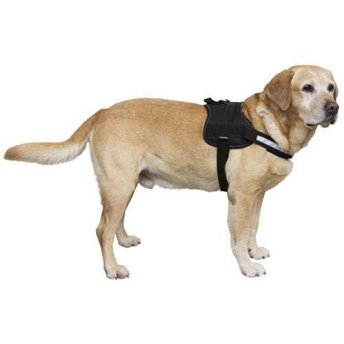 Postroj pro psy Maestro, černý - 30 - 38 cm Postroj pro psy Maestro, černá, 30 - 38 cm