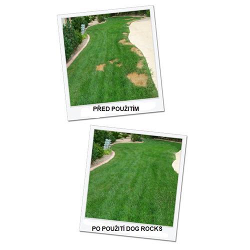 Dog Rocks pro eliminaci vypálených skvrn od psí moči na trávníku Foto před použitím a po použití