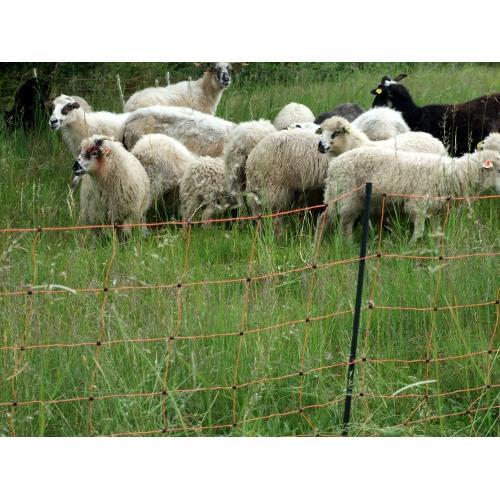 Síť pro elektrické ohradníky na ovce OVINET v. 108 cm, d. 50 m, dvojitá špička, oranžová Síť pro elektrické ohradníky na ovce OVINET v. 108 cm, d. 50 m, dvojitá špička, oranžová