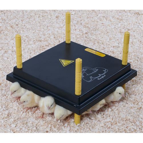 Topná deska pro drůbež - 30 x 30 cm (20 - 25 kuřat) Topná deska pro vývoj drůbeže, 30 x 30 cm
