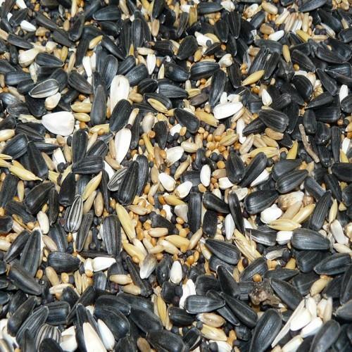 Zimní směs do krmítka pro venkovní ptactvo, 1 kg Avicentra zimní směs do krmítek - detail krmiva.