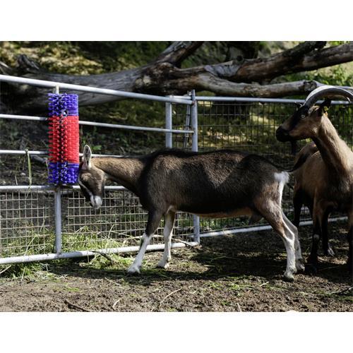 Drbadlo pro skot, koně a kozy Drbadlo pro skot, koně a kozy