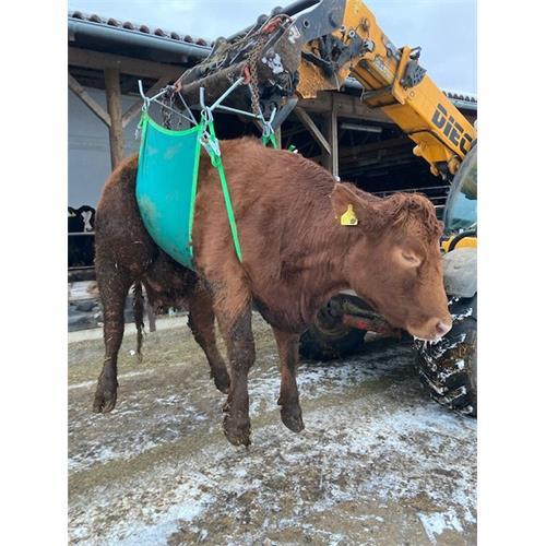 Zvedák krav - do 1000 kg Zvedák krav - do 1000 kg
