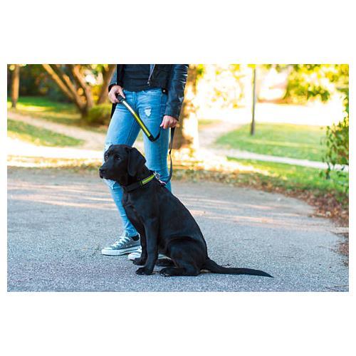 Obojek pro psa reflexní, světelný pruh - 45 - 63 cm Obojek pro psa, nylonový s reflexním pruhem, 45-63 cm
