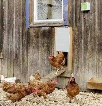 Automatické zavírání a otvírání kurníku