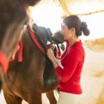 Výběr sedla na koně
