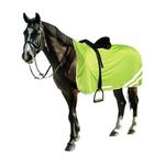 Nenechte se přehlédnout! Reflexní prvky pro koně i jezdce.